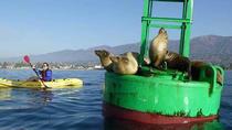 Santa Barbara Harbor Kayak, Santa Barbara, Kayaking & Canoeing