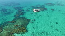 Coral Viewing, Snorkeling and Coastal Explorer Extravaganza Tour on Ningaloo Reef, Exmouth, Day ...