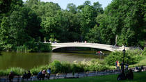 Guided Bike Tour of Central Park, New York City, Bike & Mountain Bike Tours