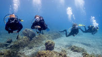 PADI Discover Scuba Diver Course, Tenerife, Scuba Diving