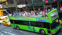 Downtown Hop On Hop Off Tour with Optional Liberty Cruise Downtown Super Tour, New York City, ...