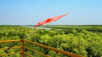 Can Gio Mangrove Forest - Private Tour for Couple by Speed boat, Ho Chi Minh City, Private...