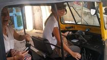 Udaipur Private Tour By TUK TUK, Udaipur, Private Sightseeing Tours
