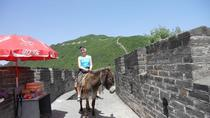 Mutianyu Great Wall and Summer Palace Private Day Trip including Lunch and Entrance fees, Beijing, ...