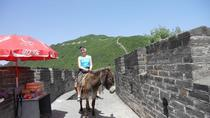 Mutianyu Great Wall and Summer Palace Private Day Trip with Lunch and Entrance fees, Beijing, ...