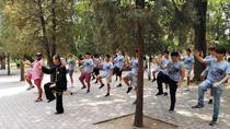 Private Half-day Tour: Temple of Heaven Visit with Tai Chi Class, Beijing, Martial Arts Classes