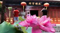Private Spiritual Tour of Confucianism Taoism and Buddhism including Lunch and Tea Ceremony, ...