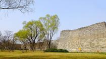 Private Tour to Beijing Ming City Wall Ruins Park and Panjiayuan Market, Beijing, Market Tours