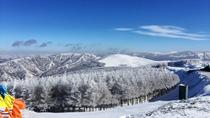 Zhangjiakou Wanlong Ski Resort Private Tour , Beijing, Ski & Snow