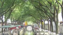 6 Hours Private Tour: Tongli Water Town and Tuisi Garden, Shanghai, Private Sightseeing Tours