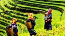 TREKKING MU CANG CHAI - Vietnam, Hanoi, 4WD, ATV & Off-Road Tours