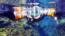 Snorkel Amazing Silfra- Drysuit with Photos, Reykjavik, Snorkeling