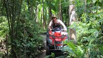 ATV Tour with Monkey Forest Experience in Bali, Bali, 4WD, ATV & Off-Road Tours