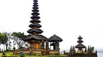 Bali Temples Day Tour Including Luwak Coffee Tasting