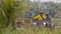 Northern Bali Highlands by ATV with Rice Terrace Upgrade, Kuta, 4WD, ATV & Off-Road Tours