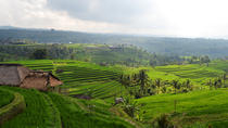 Private Tour: Bali Temple and Countryside Tour , Bali, Full-day Tours