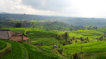 Private Tour: Temple and Countryside Tour from Bali, Bali, Hiking & Camping