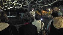 Asheville Ghost Walking Tour and Mystery Museum, Asheville, Ghost & Vampire Tours