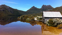 Cradle Mountain and Lake St Clair - Walking and Wildlife Tour with private camp, Launceston, ...