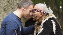 Ko Tane Maori Experience including Hangi Dinner, Christchurch, Bus & Minivan Tours