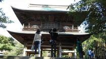 Zen Experience in Kamakura from Tokyo, Tokyo, null
