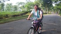 4-Day Srimangal Adventure Tour with Cycling Excursion, Dhaka