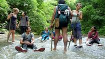 Private Tour: Full-Day Trekking Adventure Tour to Ham Ham Waterfall from Sylhet, Sylhet, Private ...
