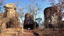 Full-Day Private Tour from Bhopal to Bhojpur and Bhimbetka, Bhopal, Private Day Trips