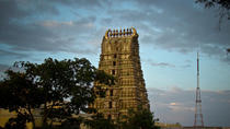 Private Full-Day Mysore Tour with Visit to Srirangapatna