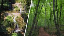 Volcanic Garrotxa day-trip from Girona, Girona, Cultural Tours