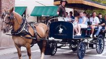 Historic Carriage Tour of Charleston, Charleston, Horse Carriage Rides