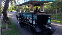 Chocolate, Distillery & Junkanoo Beach Tour, Nassau, Chocolate Tours