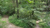 Gastronomic treasure hunt in the woods, Milan, 4WD, ATV & Off-Road Tours