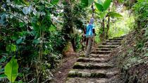 Coffee Jungle Tour to Machu Picchu, Cusco, Coffee & Tea Tours