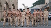 """Descendants of the Sun"" Tour from Seoul, Seoul, Movie & TV Tours"
