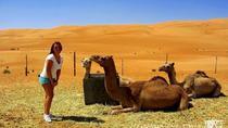 WAHIBA SANDS AND WADI BANI KHALID, Muscat, Day Trips
