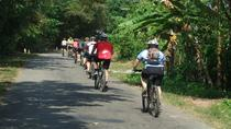 3-Day Mekong Delta Bike Tour from Ho Chi Minh City, Ho Chi Minh City, Multi-day Tours