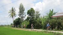 Countryside Bike Tour from Ho Chi Minh City, Ho Chi Minh City, Bike & Mountain Bike Tours