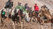 The Andes by Horseback Riding, Mendoza, Multi-day Tours
