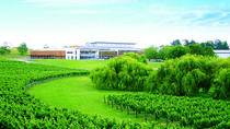 Villa Maria Wine Tour and Airport Shuttle from Auckland, Auckland, Private Sightseeing Tours