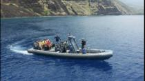 Snorkeling & Marine Life Experience, Big Island of Hawaii, Day Cruises
