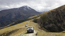 High Country Sheep Station private half day tour, Queenstown, Queenstown, Private Sightseeing Tours