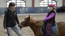 Equestrian Complex Tour with Horse-back Riding and Light Brunch, St Petersburg
