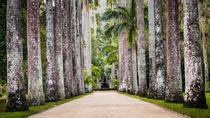 Rio de Janeiro Botanical Garden Admission Ticket, Rio de Janeiro, null