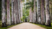 Rio de Janeiro Botanical Garden - TICKET AND TRANSFER, Rio de Janeiro, 4WD, ATV & Off-Road Tours