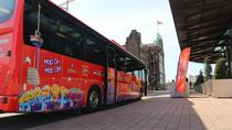 Hop-On Hop-Off City Sightseeing Bus Tour 24 hour, Rotterdam, Hop-on Hop-off Tours