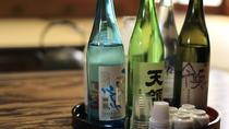Sake Brewery Visit and Tasting Tour in Hida