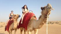 Dubai Overnight Safari Experience with Camel Ride, ドバイ