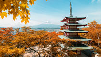 8 Day Japan Tour, Osaka, Cultural Tours