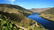 Douro Valley Private Wine Tasting Tour with Lunch from Porto, Porto, Private Day Trips